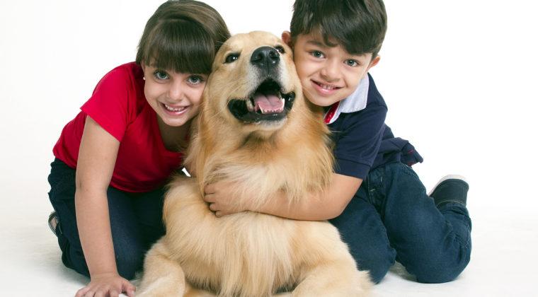 Uma boa escolha: Pet feliz, tutor mais ainda!
